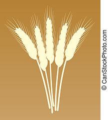 grupo, vetorial, trigo, orelhas