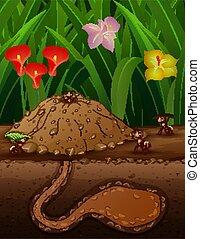 grupp, arbete, myror, jord