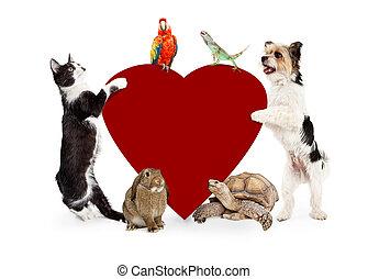 grupp, av, älsklingsdjur, omkring, valentinkort, hjärta