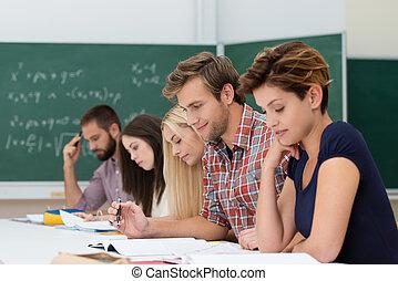 grupp, av, caucasian, bestämd, deltagare, studera