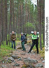 grupp, av, handelsresandear, trekking, in, skog,...
