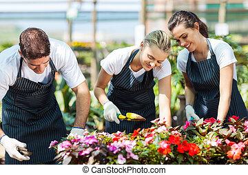 grupp, av, ung, trädgårdsmästare, arbete