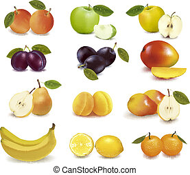 grupp, med, olik, sorts, av, frukt