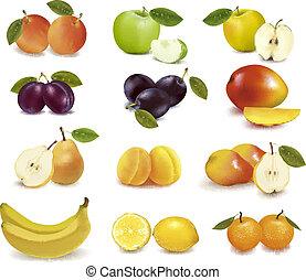 gruppe, hos, forskellige, sorts, i, frugt