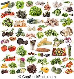 gruppe, i, grønsager