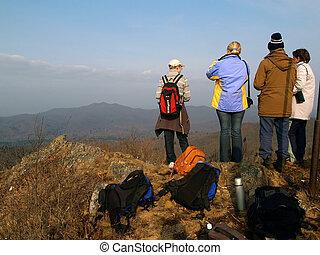 gruppe, i, hiking, folk, på, den, bjerg top