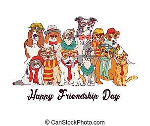 gruppe, isolieren, tag, katzen, white., freundschaft, hunden