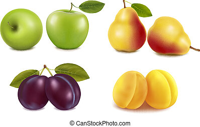 gruppe, mit, verschieden, sorts, von, fruit., vector.