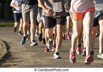 gruppe, schmutz, 5k, pfad, rennsport, läufer