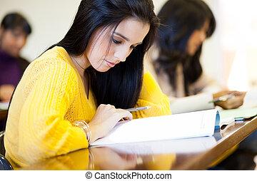 gruppe, von, hochschulstudenten, studieren