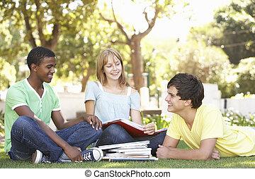 gruppe, von, jugendlich, studenten, plaudern, zusammen, park