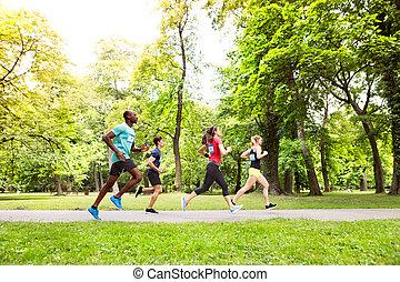 gruppe, von, junger, athleten, rennender , in, grün, sonnig, park.