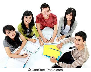gruppe, von, studenten, studieren