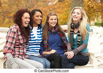 gruppe, von, vier, jugendliche mädchen, sitzen bank, in, herbst, park