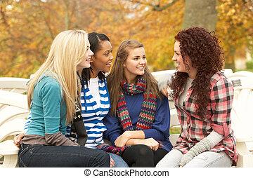 gruppe, von, vier, jugendliche mädchen, sitzen, und, plaudern, auf, bank, in, herbst, park
