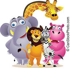 gruppo, animale