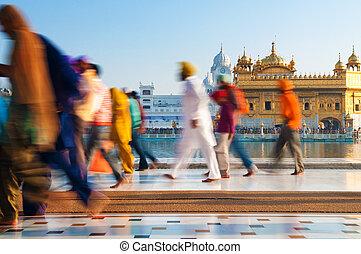 gruppo, di, sikh, pellegrini, camminare, vicino, il, tempio dorato