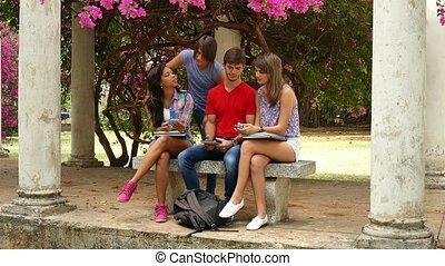 gruppo, di, studenti università, parlare, studiare, e, divertimento