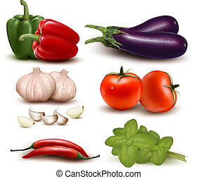 gruppo, vegetables., colorito, grande, vettore, illustration...