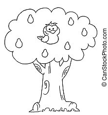 gruszka, konturowany, drzewo, kuropatwa