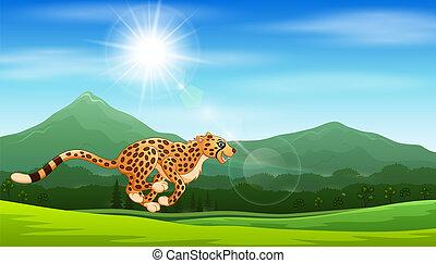 guépard, courant, jungle, dessin animé