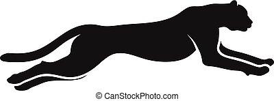 guépard, courant, silhouette