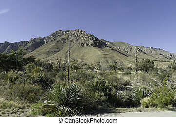 Guadalupe Mountains formation - massive formation of...
