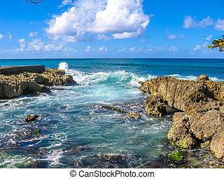 Guadeloupe coastal landscape