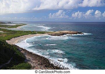 Guadeloupe beach landscape. Anse des Chateaux sandy beach scenic view.