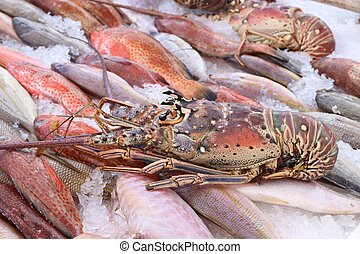 Langouste (aka spiny lobster) at Guadeloupe fish market in Pointe a Pitre, biggest city of Guadeloupe.