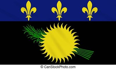 Variant flag of Guadeloupe waving cloth, ideal for background, loop