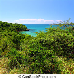 Guanica Reserve - Puerto Rico