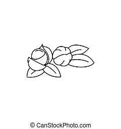 Guarana icon, outline style - Guarana icon. Outline guarana...