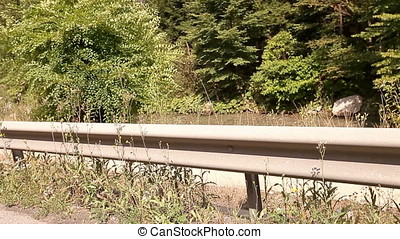 Guard Rail With Vegetation Background Standing Still Vehicle...