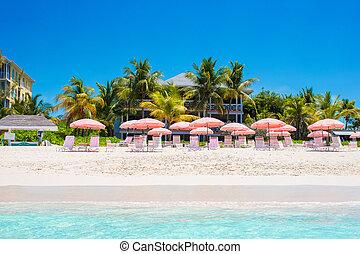 guarda-chuva, tropicais, vazio, paraisos , praia, arenoso, vista