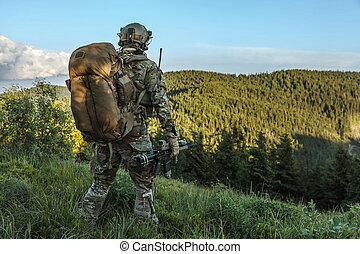 guarda-florestal, montanhas