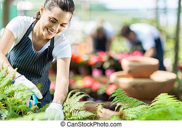 guardería infantil, trabajador, trabajando, en, invernadero