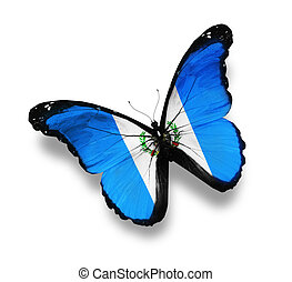 Guatemala flag butterfly, isolated on white