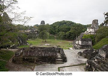 guatemala, tikal
