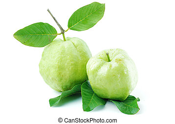 Guava fruit has green skin and white flesh, vitamin C.