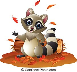 guaxinim, outono, caricatura