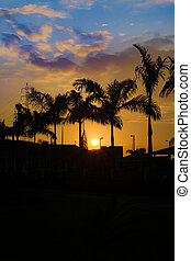 Guayaquil Outskirt Sunset Scene