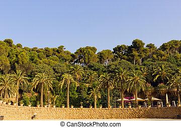 guell, parete, palma, parco