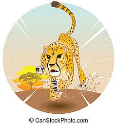 guepardo, velocidad, rey