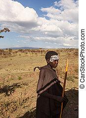 guerrier, 1.14.2017:, national, -, jeune, parc, maasai, serengeti, portrait, tanzanie, savane