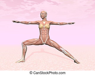 guerrier, femme, pose yoga, visible, muscle