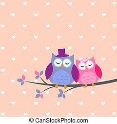 gufi, coppia, amore