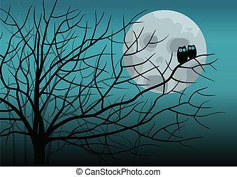 gufi, luna piena