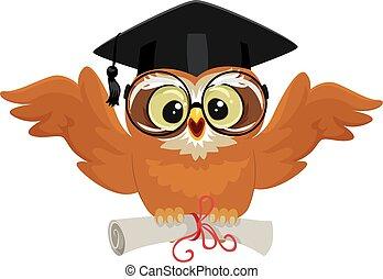gufo, berretto, prese, diploma