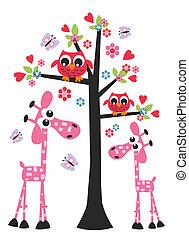 gufo, giraffa, amore, compleanno, valentina